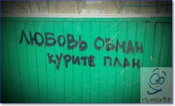 Фото приколы смешные с надписями