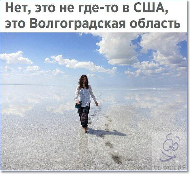 Смешные фото и картинки с надписями
