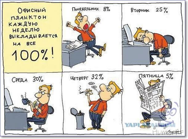 Смешные картинки про работу менеджера