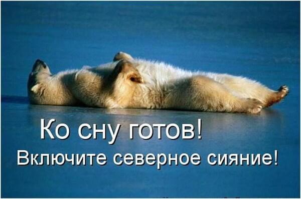 https://cdn.humoraf.ru/wp-content/uploads/2018/03/good-night-pictures-funny-38.jpg