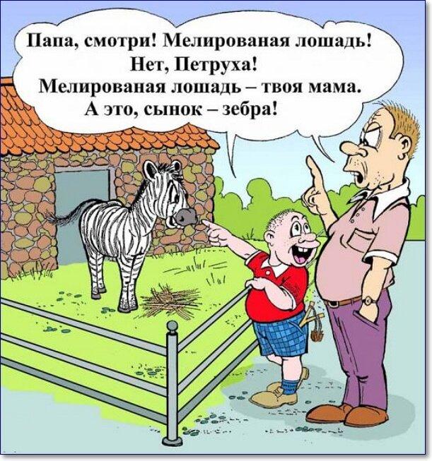 Картинки видео приколы смешные истории и анекдоты, новогодние