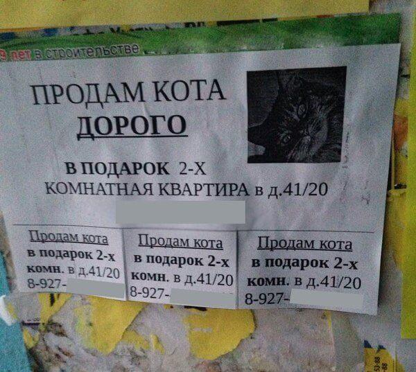 Прикольные объявления и надписи фото