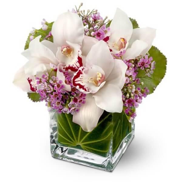 Для, букет орхидей открытка