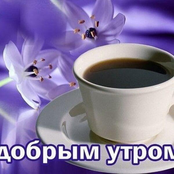 Доброе утро картинки красивые необычные