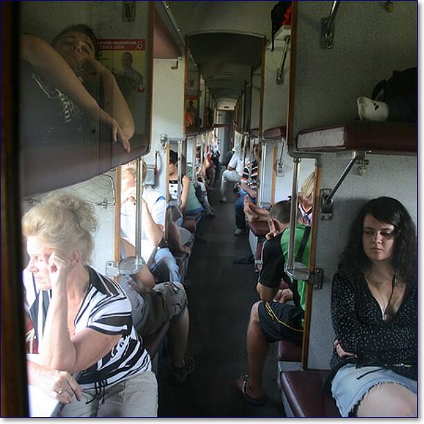 внушительный список прикольные фото в поездах плацкартных вагонах террин шампиньонами для