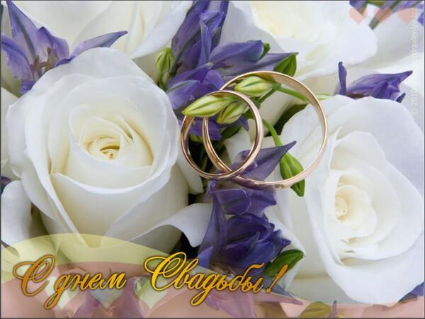 С годовщиной свадьбы картинки красивые