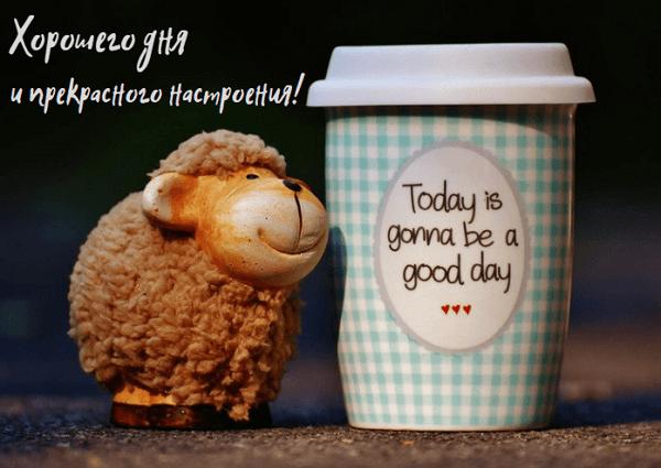 хорошего дня и отличного настроения