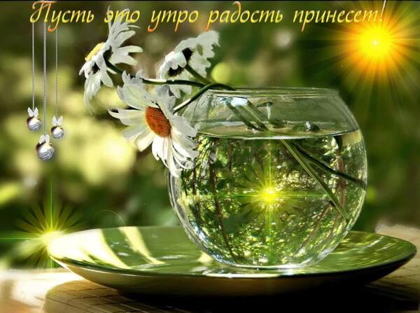 Доброго дня и прекрасного настроения красивые картинки