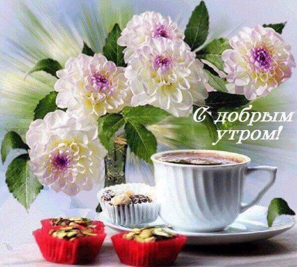 Картинки с добрым утром и позитивом прикольные