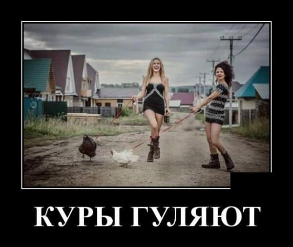 Демотиваторы смешные свежие 2018 ВК