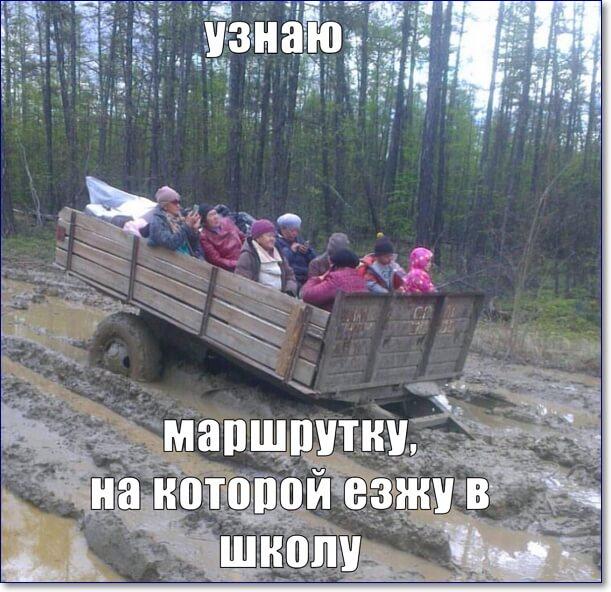 Смешные моменты фото