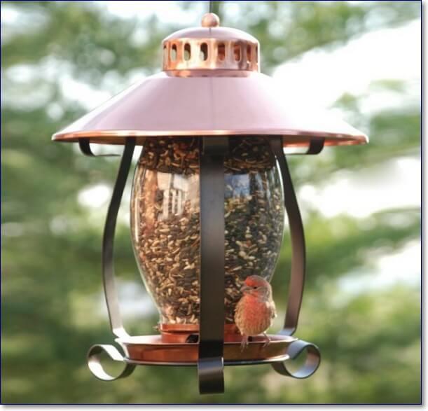 Прикольные кормушки для птиц фото