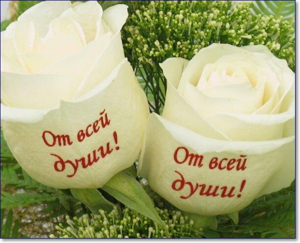 Картинки открытка, картинки с белыми розами и надписями для самой