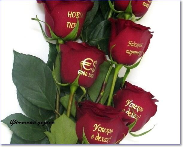Днем, красивые картинки розы с надписью