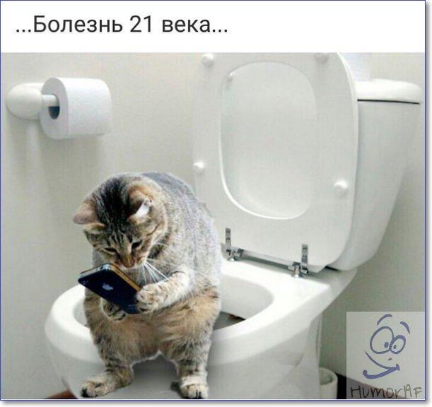 Фото приколы Россия