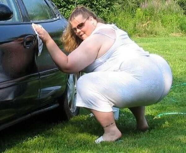 толстые телки в машине фото чем отличие
