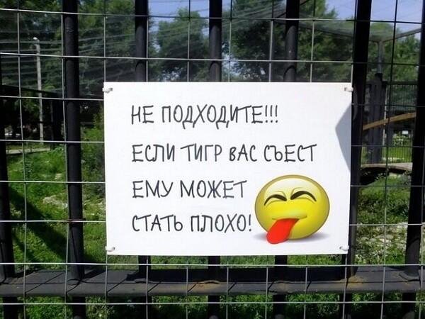 Смешные картинки вк с надписями до слез