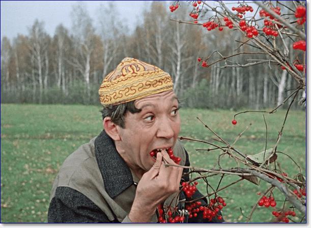 Юрий Никулин прикольные фото