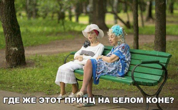 Мемы картинки с надписями