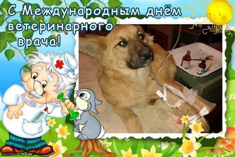 День ветеринарного врача открытка, воинов интернационалистов открытки