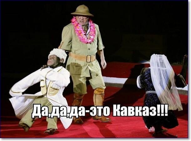 Смешные картинки про кавказ, папе своими