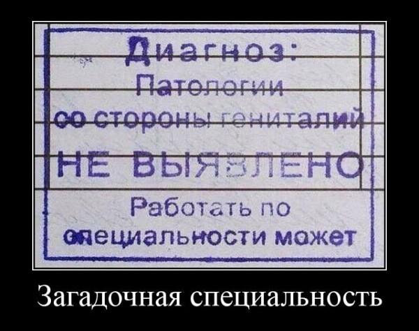 Демотиваторы 15.04.2019