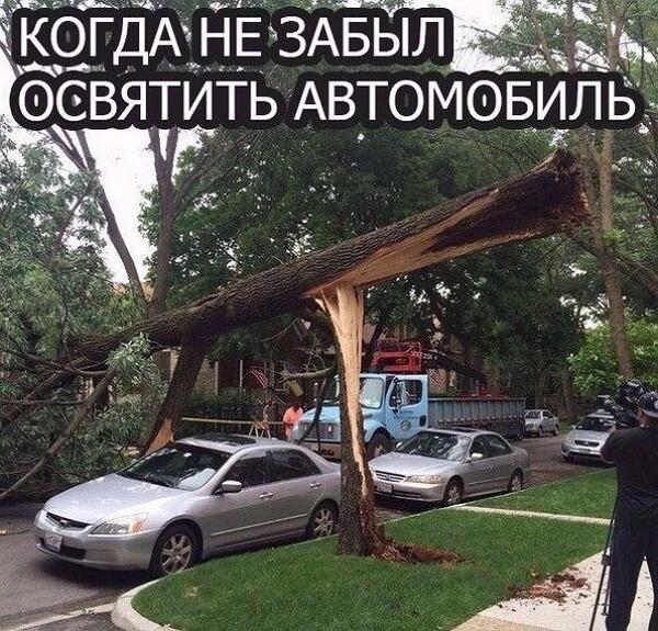 Фото приколы 13.04.2019