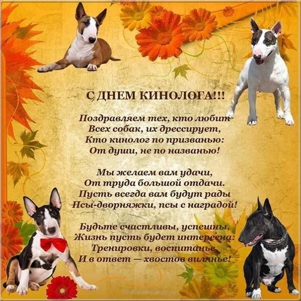 грыжа поздравление питомнику собак это