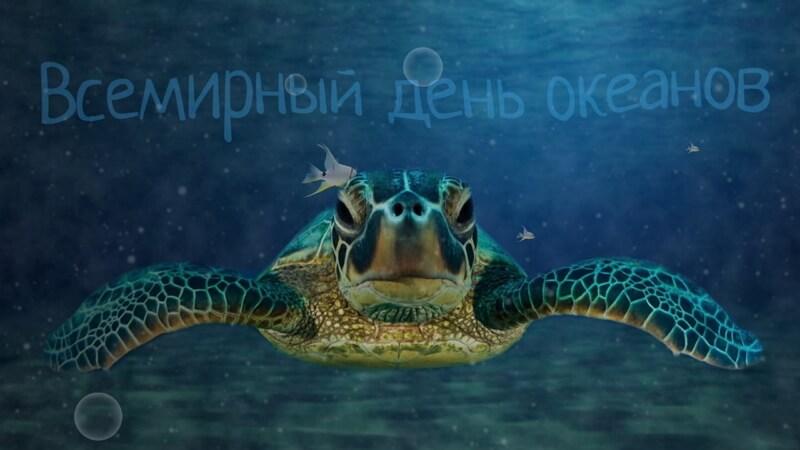 Красивые картинки Всемирный день океанов