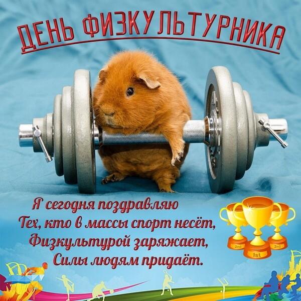 Красивые картинки День физкультурника