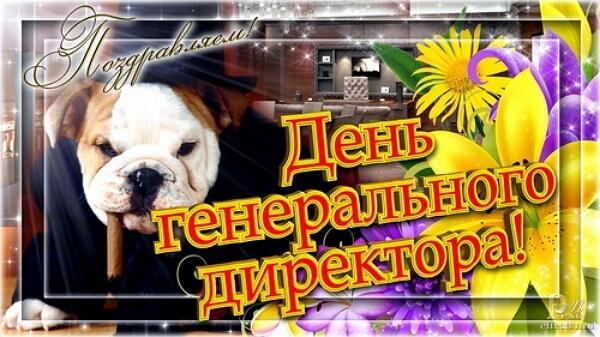 стоит электросерфе, поздравление в день генерального директора чистокровная славянка