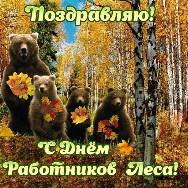 Поздравление к дню работников леса картинки