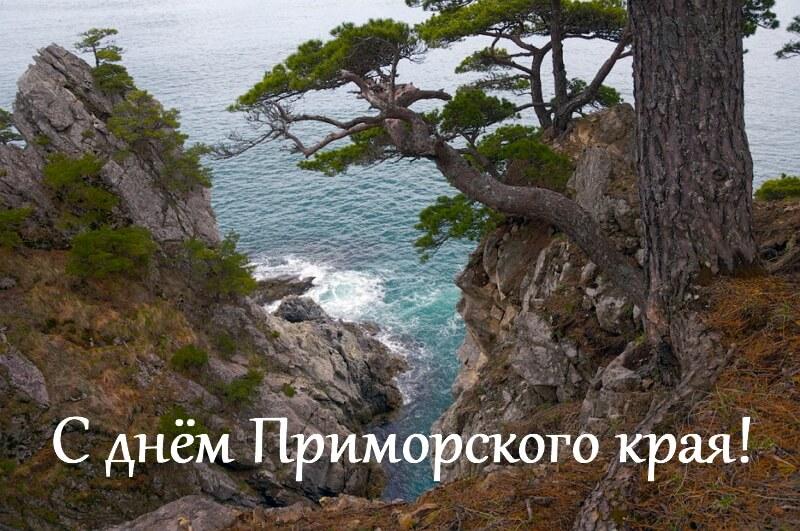 день приморского края поздравление