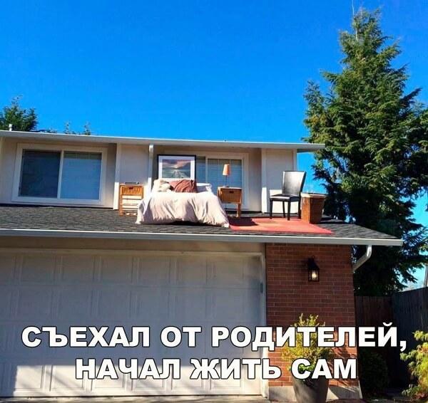 Фото приколы за 12.11.19