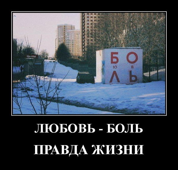 Прикольные демотиваторы от 13.02.2020