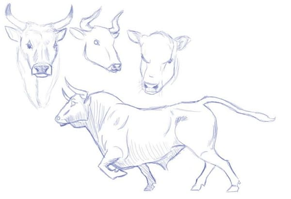 Рисунки в блокноте для срисовки
