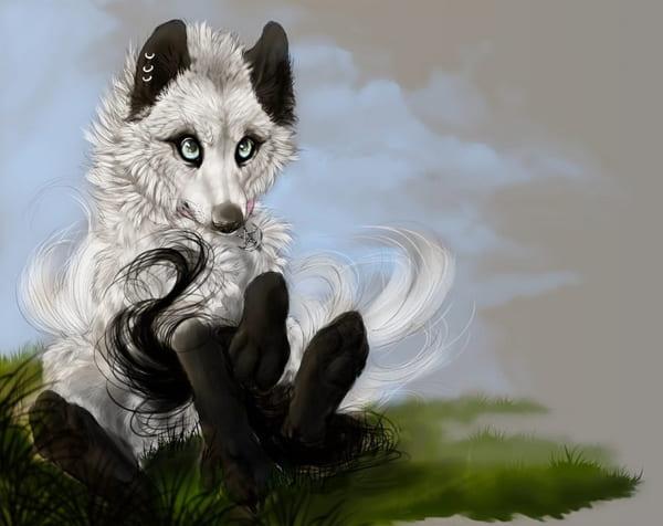 Рисунки волков аниме для срисовки