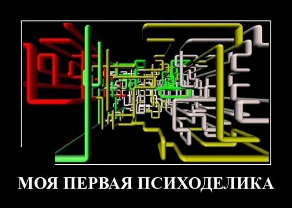 Демотиваторы за 09.11.2020