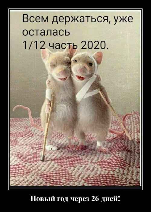 Демотиваторы за 09.12.2020