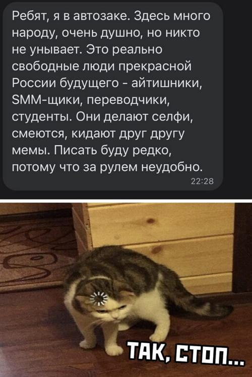 Фото приколы от 31.01.2021
