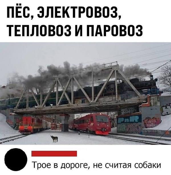 Фото приколы за 19.01.2021