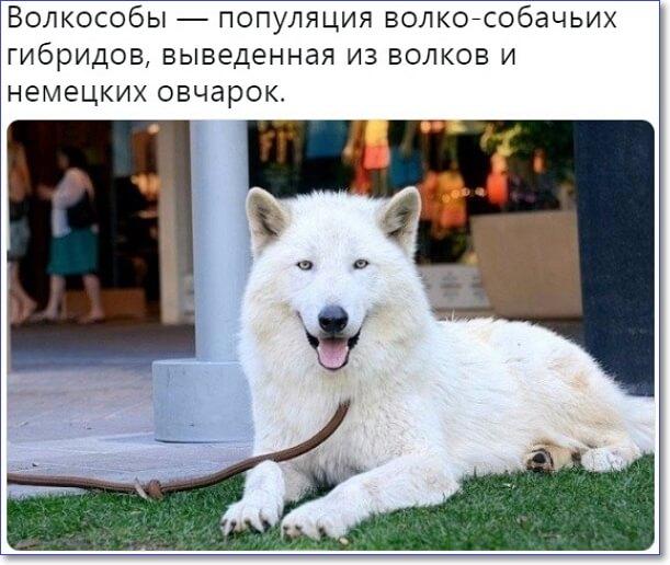 Fitness 24/7 киевская